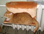 Меховые гамаки для кошек на батарею( любые)