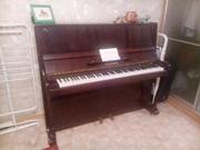 Отдам срочно пианино  Ласточка